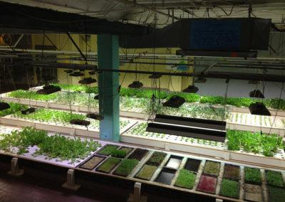 farm-above