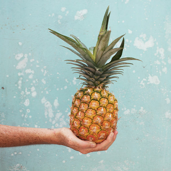 From Food Waste to House Plant: Pineapple